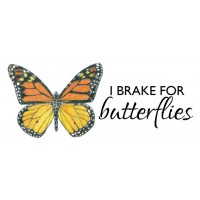 """I brake for butterflies"" monarch bumper sticker"